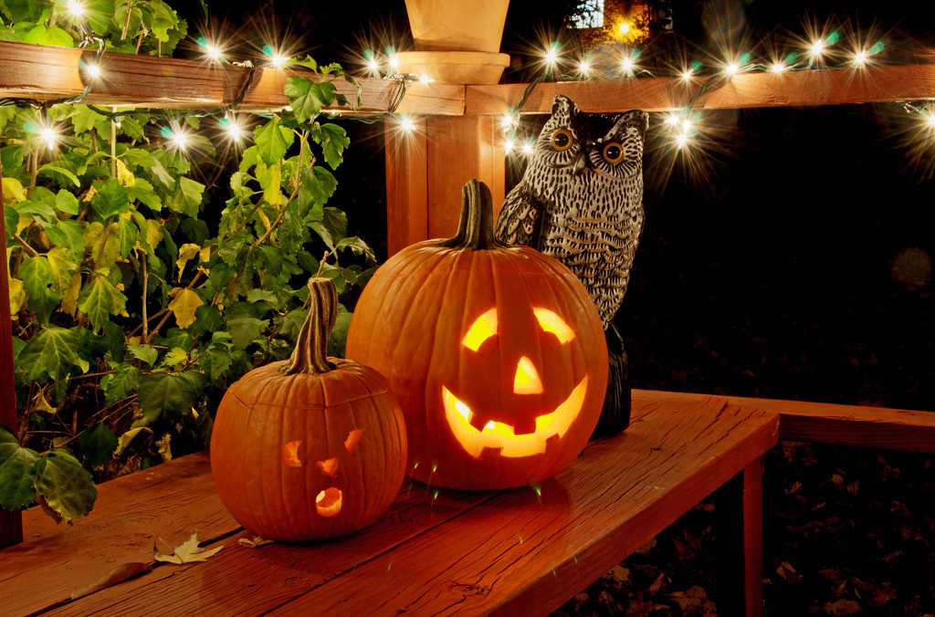 Halloween-Pumpkins-with-faux-Owl